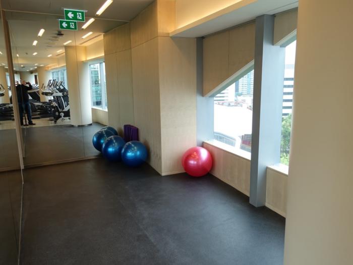 Park Hyatt Bangkok - Fitness Center - Balls